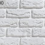 Руан 100