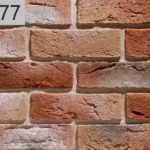 Дижон 777